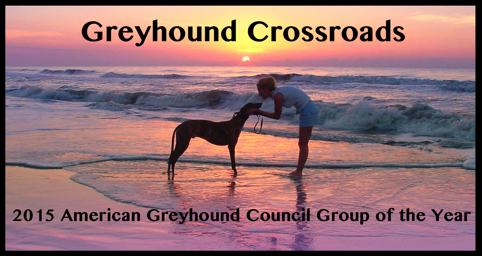 Greyhound Adoption Group of the Year Greyhound Crossroads